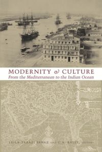 Test Cover Image of:  Modernity and Culture