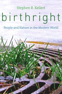 Test Cover Image of:  Birthright