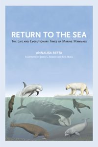 Test Cover Image of:  Return to the Sea