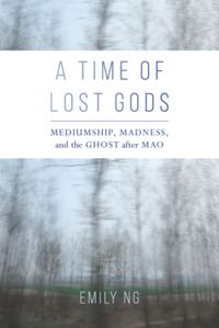 Test Cover Image of:  A Time of Lost Gods
