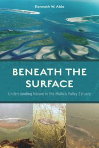 Test Cover Image of:  Beneath the Surface
