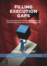 Filling Execution Gaps: What Executives and Project Managers Need to Know