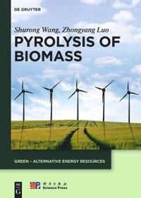 Pyrolysis of Biomass