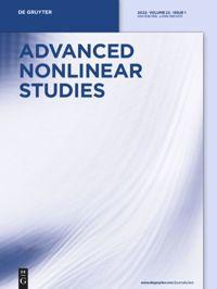 Advanced Nonlinear Studies