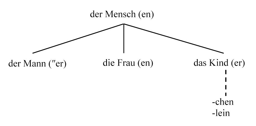 Pdf maskulin tabelle feminin neutrum Artikel Deklination