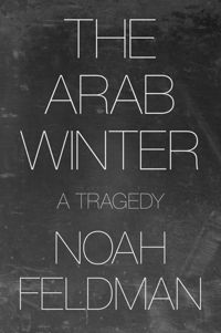 Test Cover Image of:  The Arab Winter